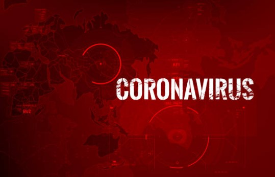 Support for Entrepreneurs Affected by the Coronavirus COVID-19